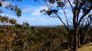 Adelaide a Yurrebilla trackről