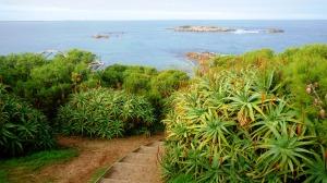 Port Elliot az aloe verákon (?) túl