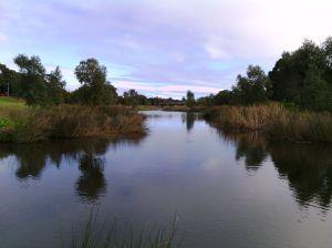 A Torrens folyó